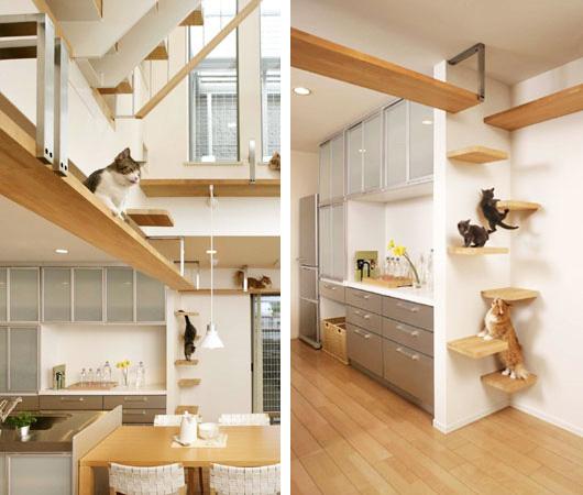 das wohl katzenfreundlichste haus der welt. Black Bedroom Furniture Sets. Home Design Ideas