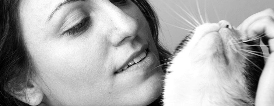 Gewinnspiel: Kluge Frauen und ihre Katzen