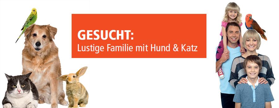 Gesucht: Lebensfrohe Familie mit Haustieren