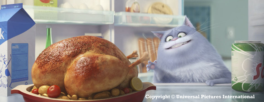 Pets 3D - © Universal Pictures International