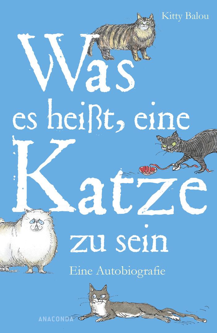 Gewinnspiel: Was es heißt, eine Katze zu sein - Katzen.de