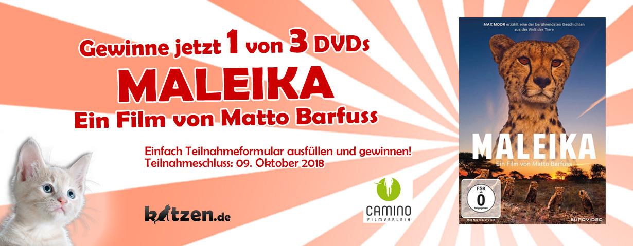 """Gewinnspiel: Drei DVDs zum Heimkinostart von """"MALEIKA"""""""