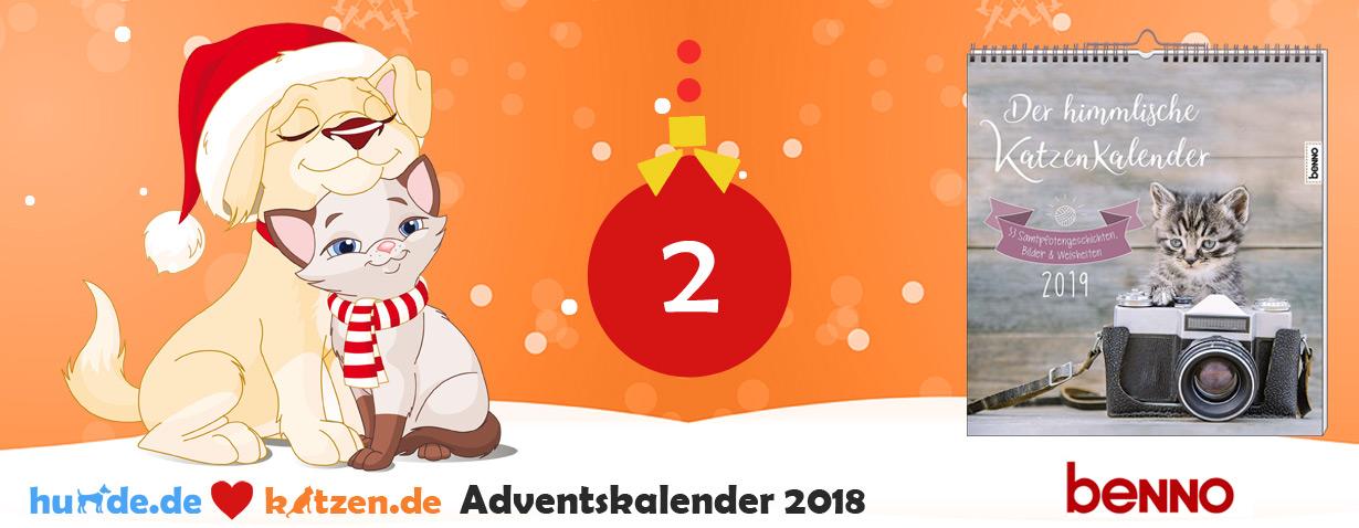 Gewinnspiel: Der himmlische Katzenkalender 2019 - 53 Samtpfotengeschichten, Bilder & Weisheiten
