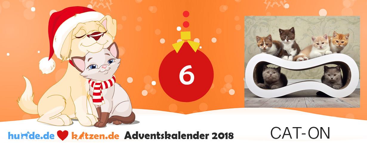 """Gewinnspiel: Design-Kratzmöbel """"Singha"""" (Größe M) von cat-on"""