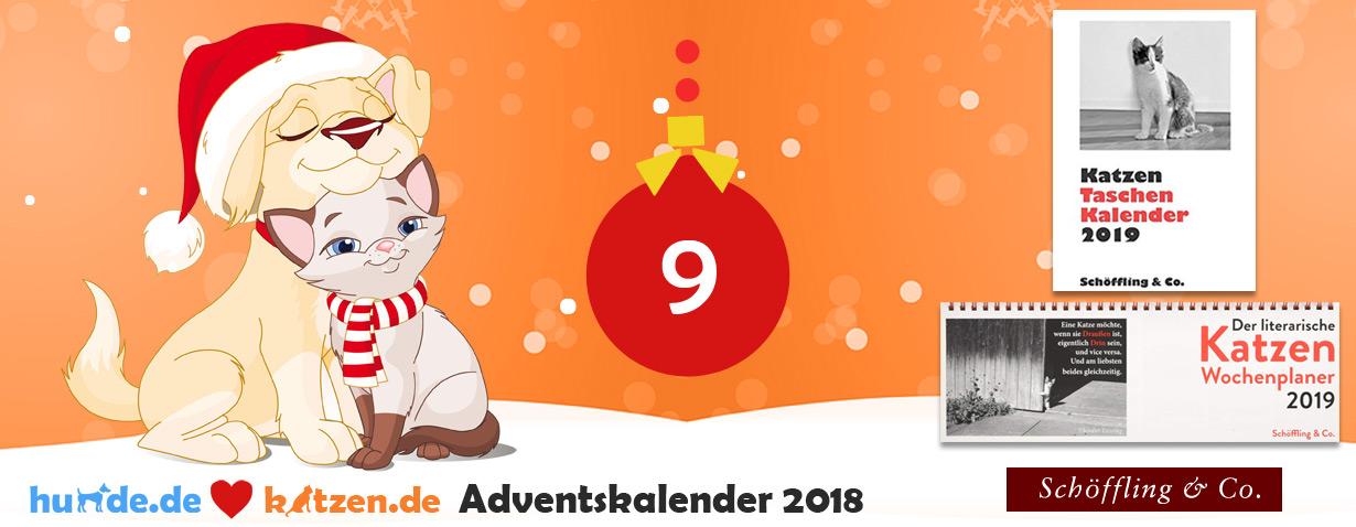 Gewinnspiel: Katzen Taschenkalender 2019 & Der literarische Katzen Wochenplaner 2019