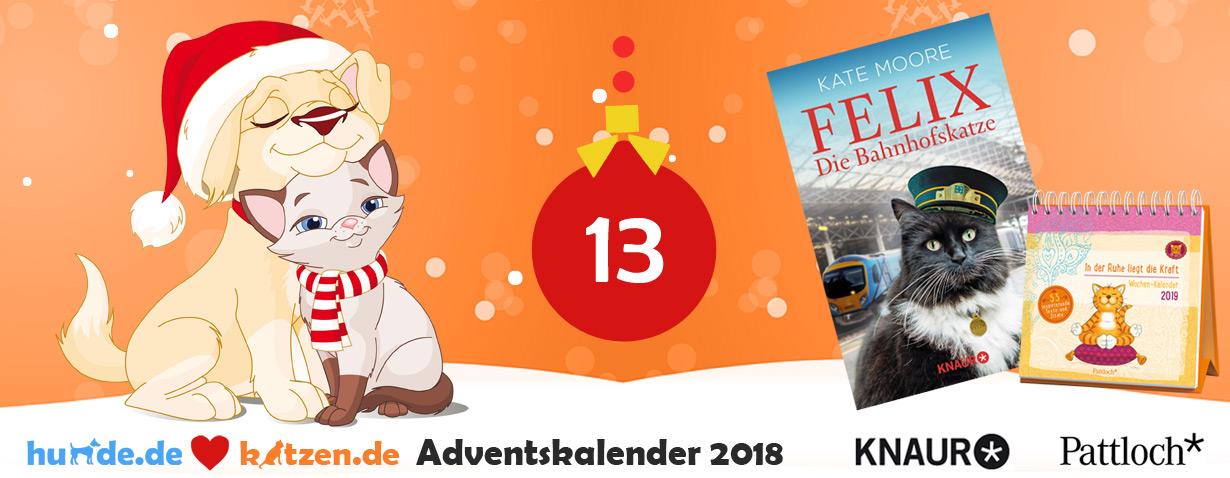 """Gewinnspiel: """"Felix – Die Bahnhofskatze"""" & """"Om-Katze: In der Ruhe liegt die Kraft – Wochen-Kalender 2019"""""""