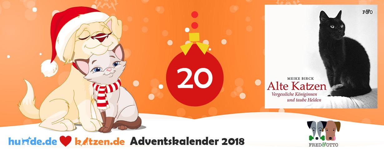 Gewinnspiel: Alte Katzen - Vergessliche Königinnen und taube Helden