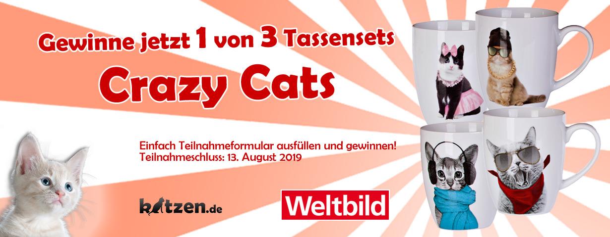 """Gewinnspiel: Drei Tassensets """"Crazy Cats"""" von Weltbild"""