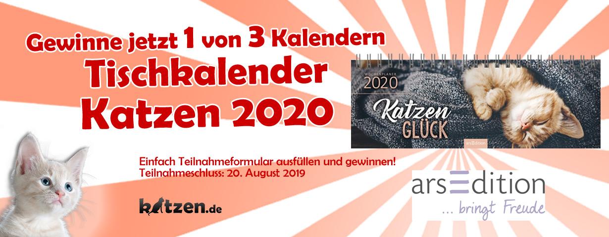Gewinnspiel: Tischkalender Katzen 2020