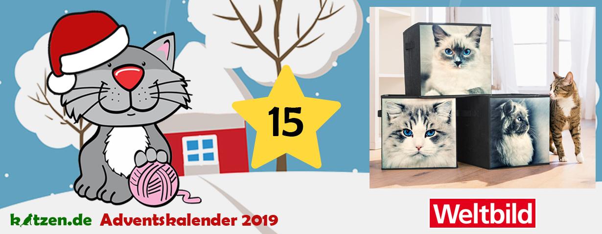 """Gewinnspiel: Faltbare Aufbewahrungsboxen """"Cats"""" von Weltbild"""