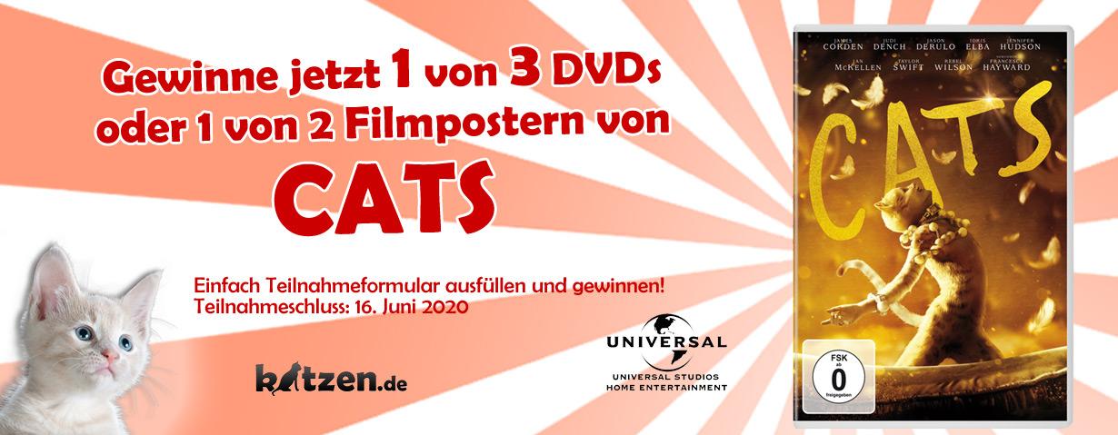Gewinnspiel: 3 DVDs und 2 Filmposter von CATS!