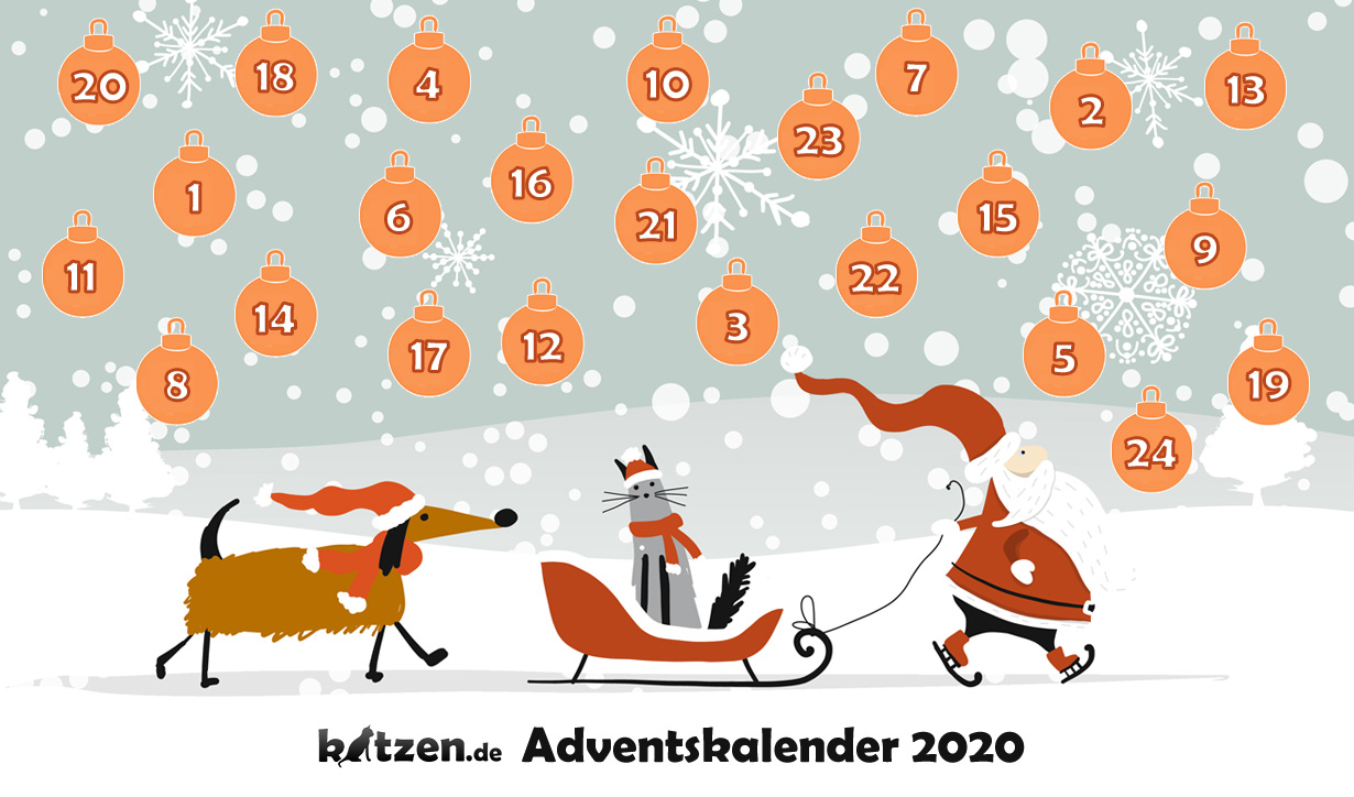 Der große katzen.de-Adventskalender 2020