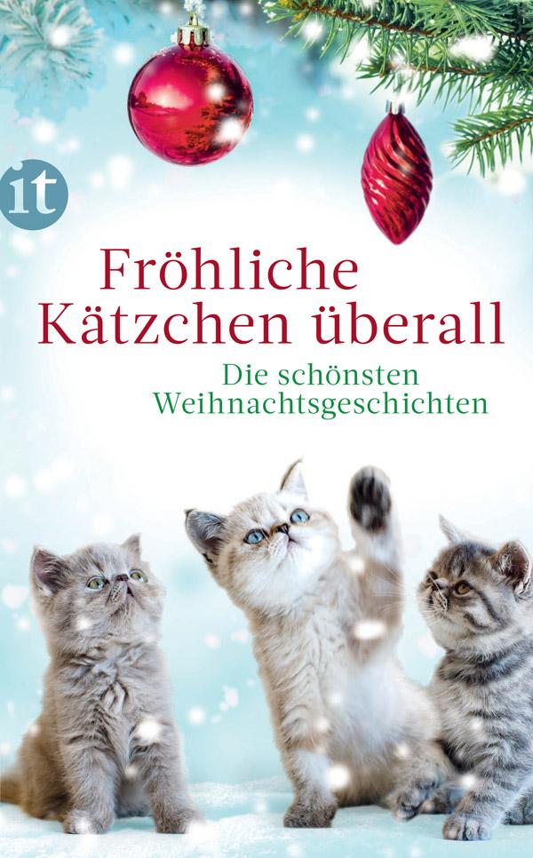 Fröhliche Kätzchen überall - Die schönsten Weihnachtsgeschichten