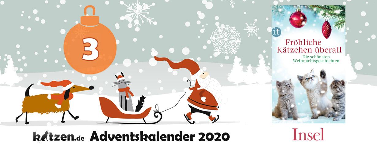 Gewinnspiel: Fröhliche Kätzchen überall – Die schönsten Weihnachtsgeschichten
