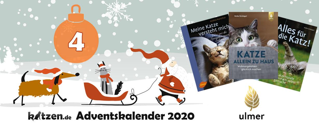 """Gewinnspiel: Bücher-Bundles mit """"Katze allein zu Haus"""", """"Meine Katze versteht mich"""" und """"Alles für die Katz"""""""