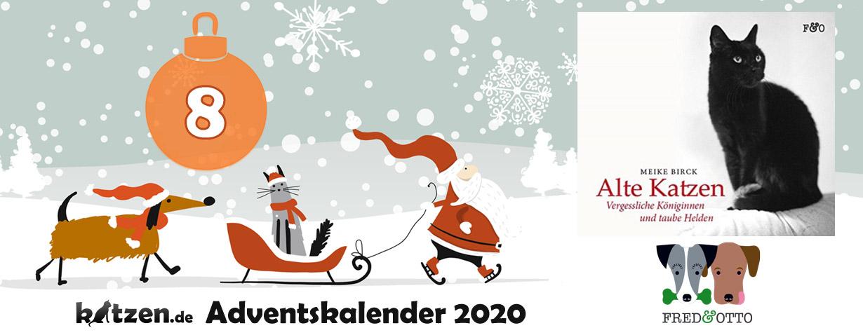 """Gewinnspiel: """"Alte Katzen - Vergessliche Königinnen und taube Helden"""" von Meike Birck"""