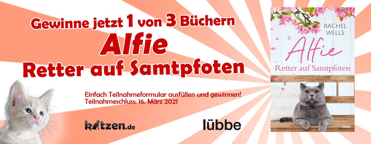 """Gewinnspiel: """"Alfie – Retter auf Samtpfoten"""" von Rachel Wells"""