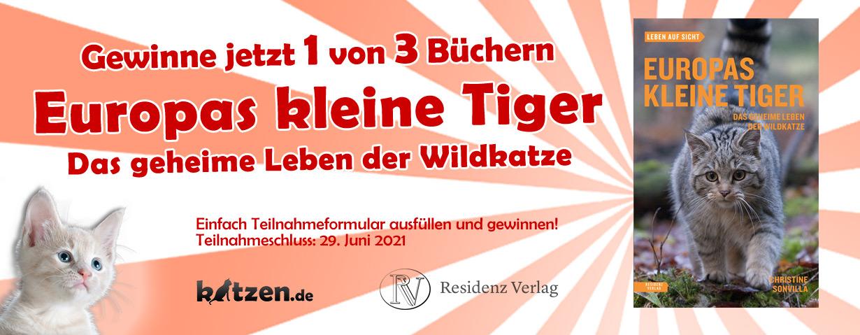 Gewinnspiel: Europas kleine Tiger – Das geheime Leben der Wildkatze