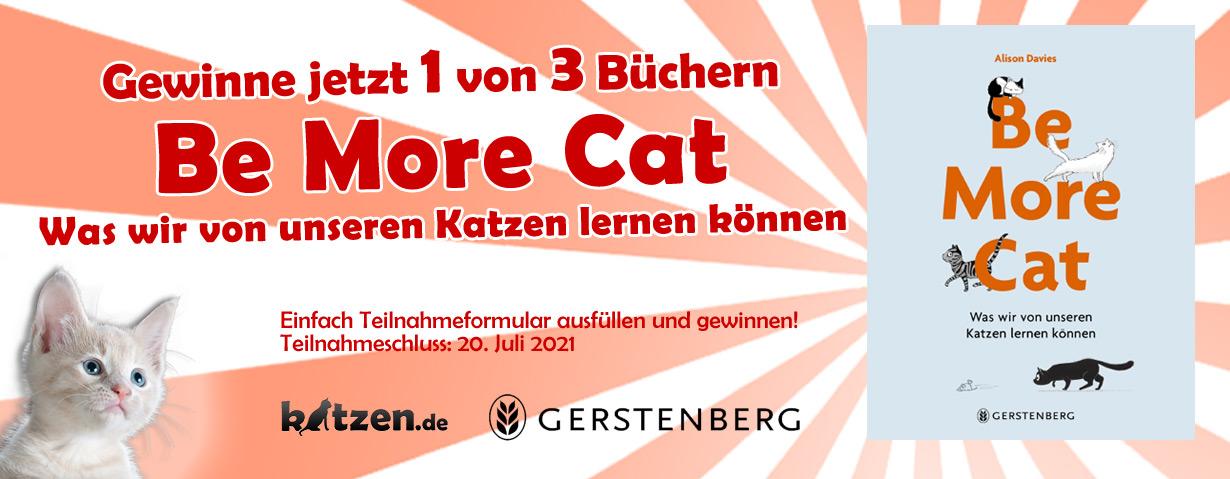 Gewinnspiel: Be More Cat - Was wir von unseren Katzen lernen können