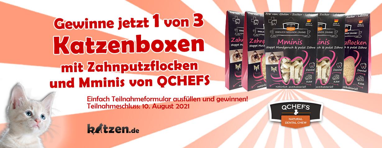 Gewinnspiel: Drei QCHEFS-Katzenboxen mit Zahnputzflocken Mminis