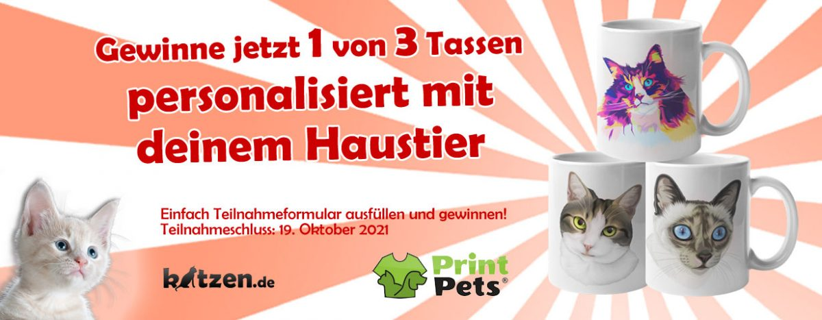Gewinnspiel: Drei Tassen – personalisiert mit deinem Haustier