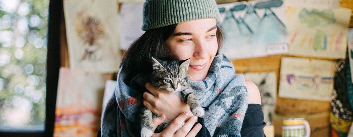 Umzug mit Katze: 7 hilfreiche Tipps, wie man den Umzug stressfrei angeht